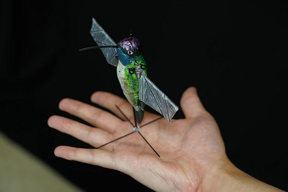 Hummingbird-like unmanned flying drone developed at Purdue to push limits of micro technology